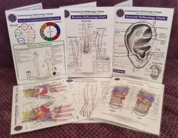 set of reflexology charts